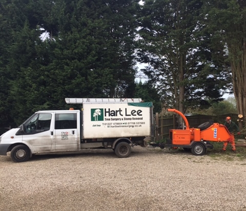 services site clearance