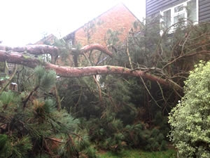 storm damage and insurance work in kent
